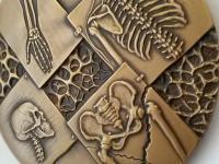 Marián Polonský: Spoločnosť pre osteoporózu a metabolické ochorenia kostí, Slovenská lekárska spoločnosť, 2013, tombak, 80 mm, reverz, detail