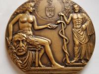 Spolok slovenských lekárov v Bratislave, 90. výročie vzniku, 2010, patinovaný tombak, reverz80 mm
