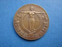 Medaila zemská jednota 1935 J. Stehlík