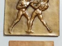 Medaile/plakety  šport