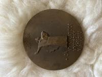 Medaily Košice