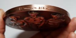 Marián Polonský: Dionýz Dieška/Inštitút pre ďalšie vzdelávanie pracovníkov v zdravotníctve, 1996, 100 mm, materiál Cu, hrana